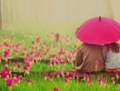 romantic-flowers-couple-umbrella-facebook-cover-4262